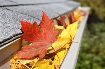 bigstock-Rain-Gutter-Full-Of-Leaves-4222402